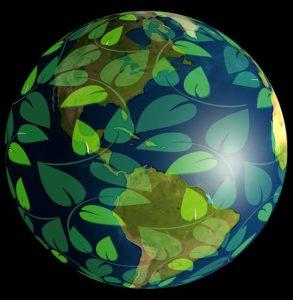Erde Nachhaltigkeit